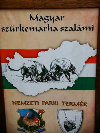 Festval Banner