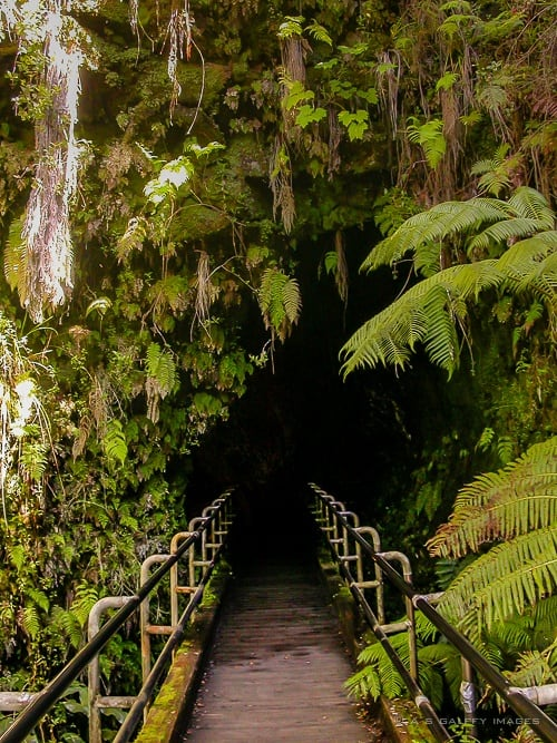 Entrance to the Lava tube
