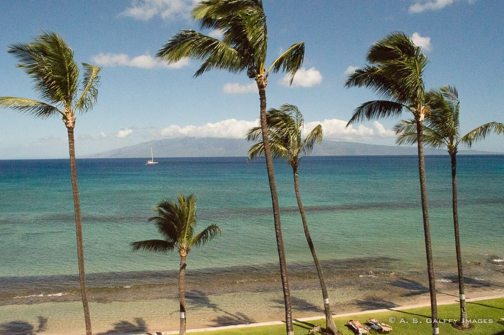 Image depicting a beautiful beach, one of the top 10 reasons to fall in love with Maui