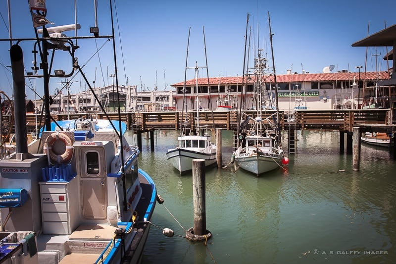 The Weekly Postcard: The Fisherman's Wharf Fishing Fleet, San Francisco