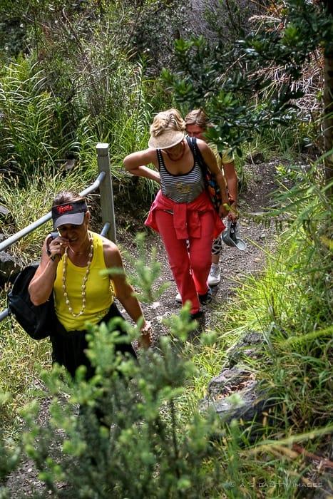 hiking the Kilauea Iki trail