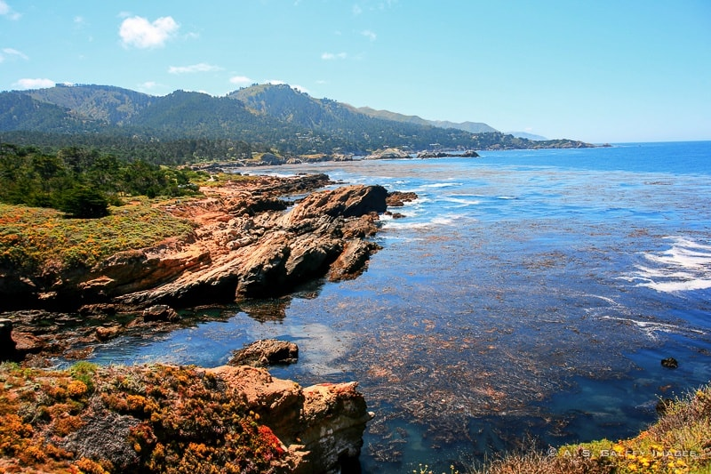 Top 7 Attractions on the Monterey Peninsula