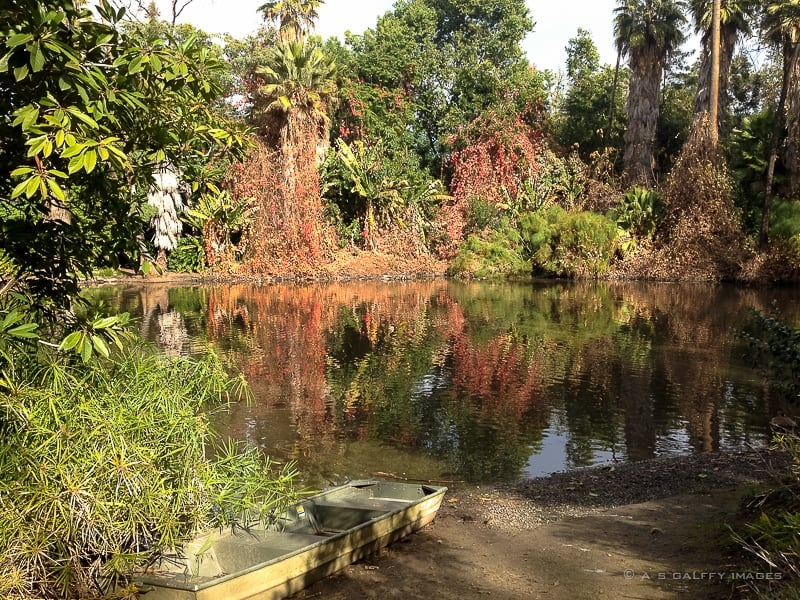 LA county arboretum