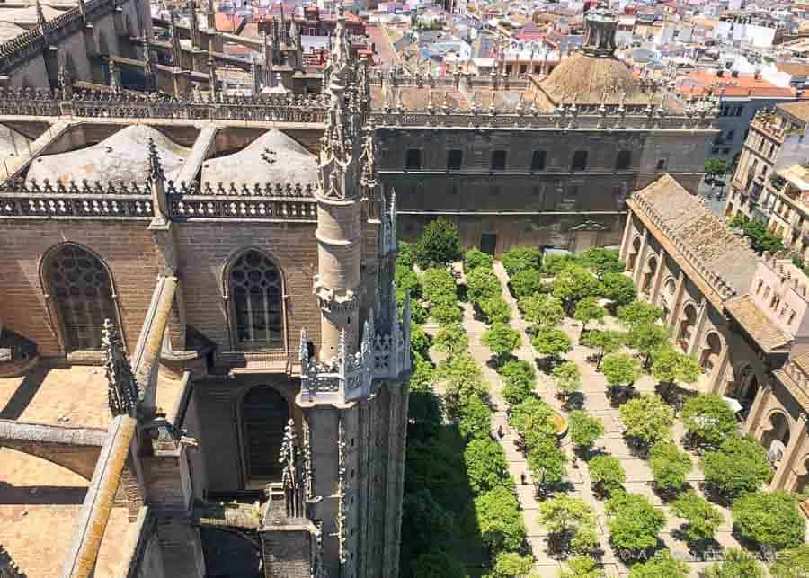 Courtyard of the Cathedral of Seville