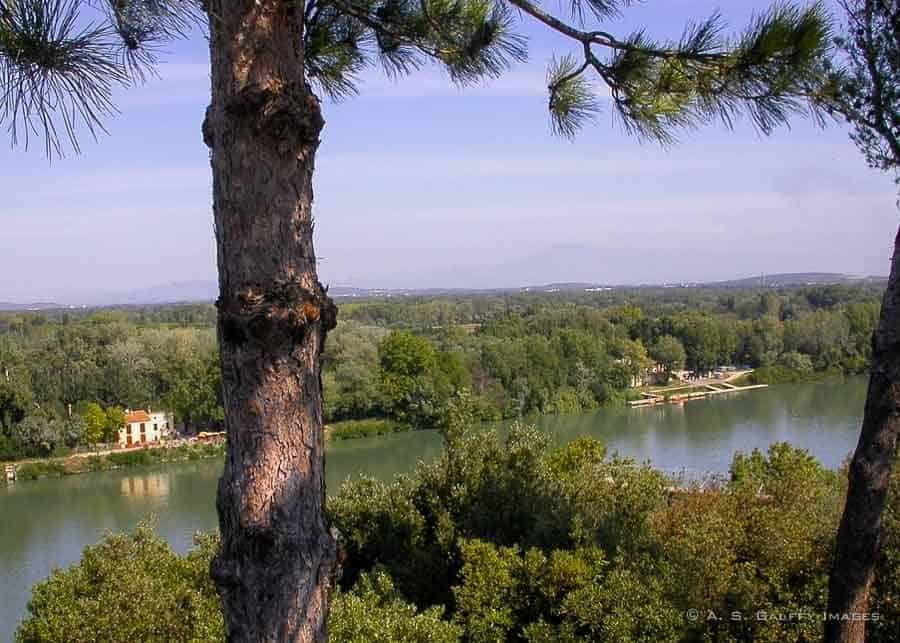 View of the Rhône River