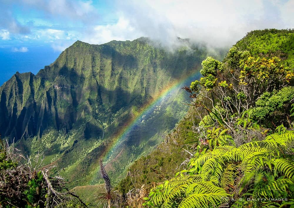8 Great Spots You Shouldn't Miss If You Visit Kauai