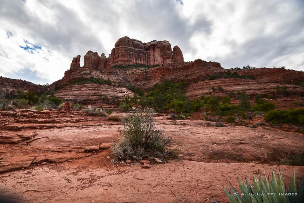 View of the Cathedral Rock