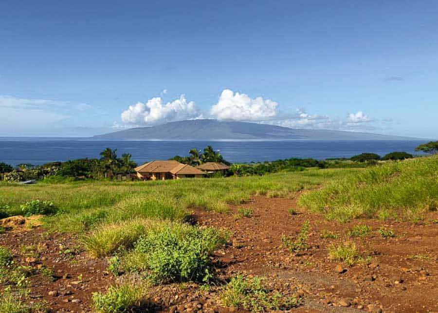Farm in Maui