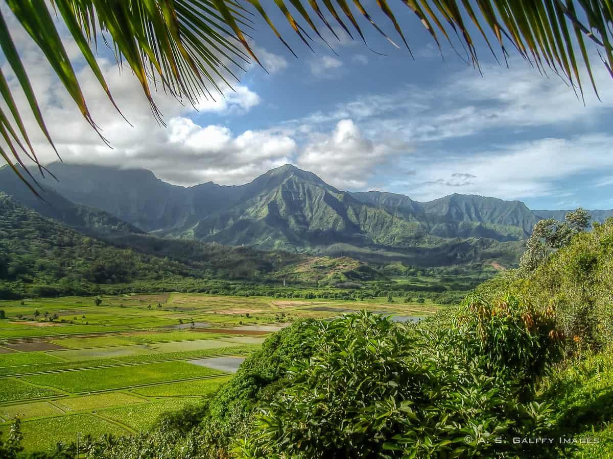 Hawaii photos: Hanalei Overlook