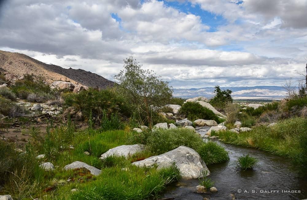 the stream running through Tahquitz Canyon