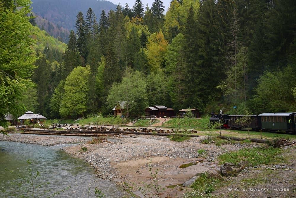 Landscape along the Mocanita railroad