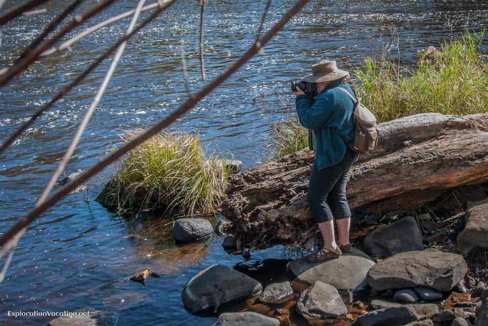 Cindy Carlsson photographing the water