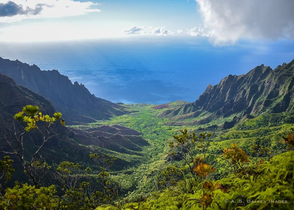 View of Koke'e State Park in Kauai