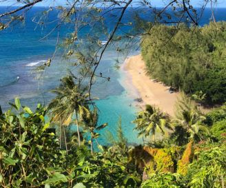 Why Choose Kauai? Here Are Some Compelling Reasons to Help You Decide