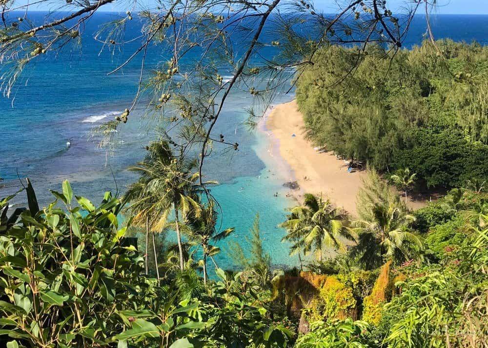 Kauai vs Maui: Which Island to Choose?