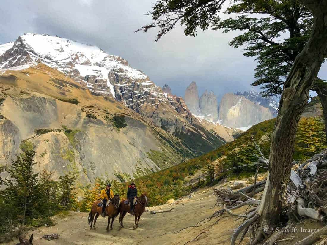 Mirador D'Agostini day hikes in Torres del Paine