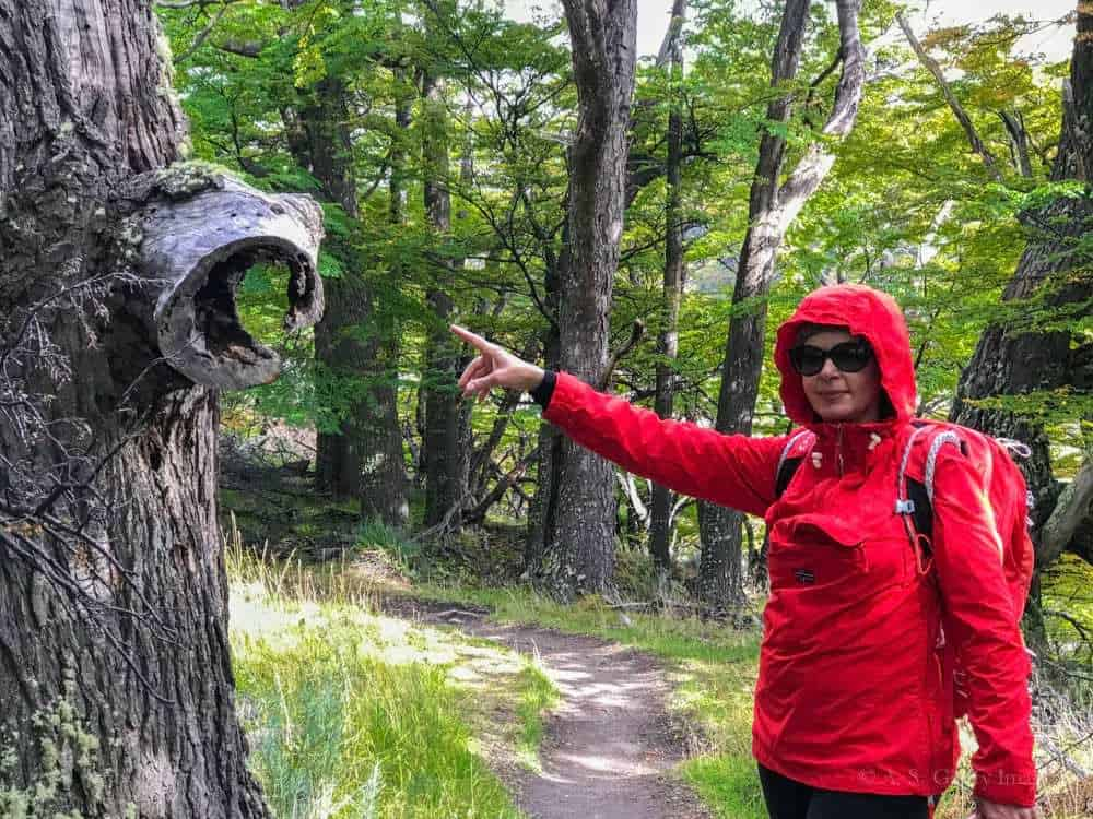 Anda Galffy in Patagonia