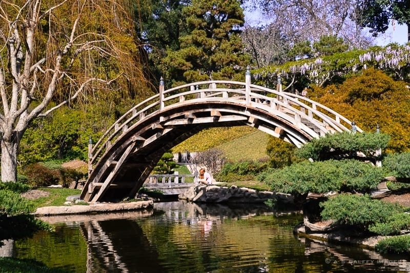 day trip to Huntington Library and Gardens