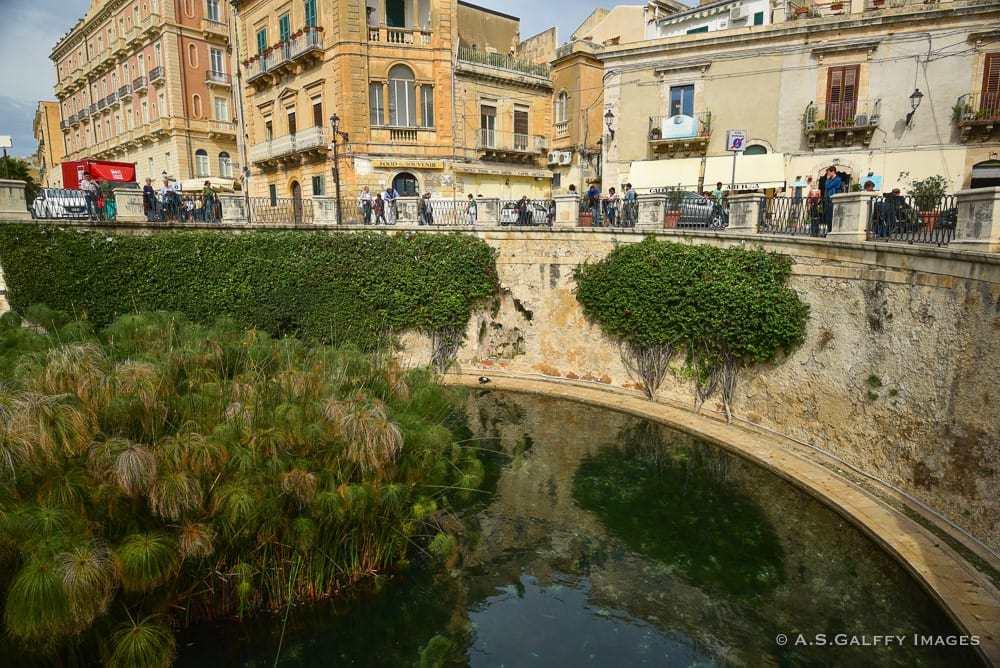 The Fountain of Arethusa in Ortigia