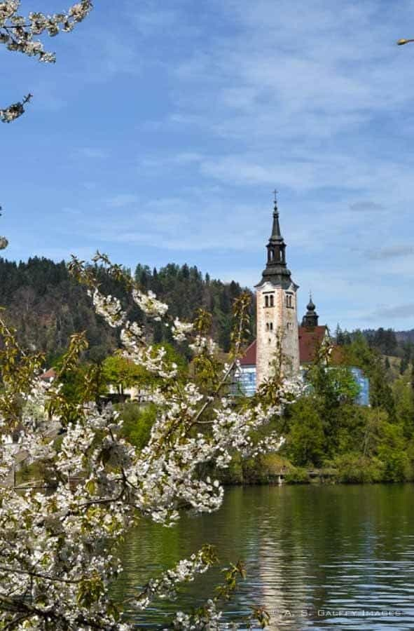 view of the Church of the Assumption on Bled Island
