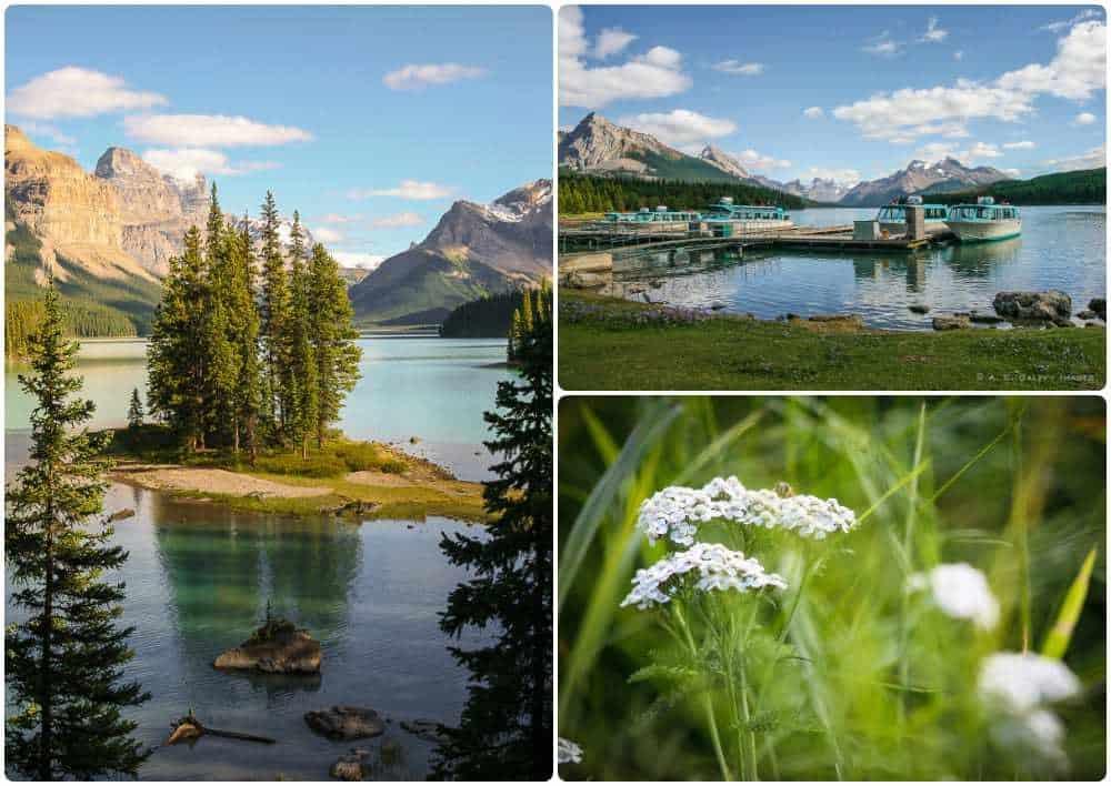 Lake Minnewanka in Banff National Park