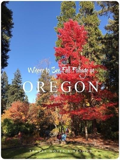 Fall Foliage in Southern Oregon
