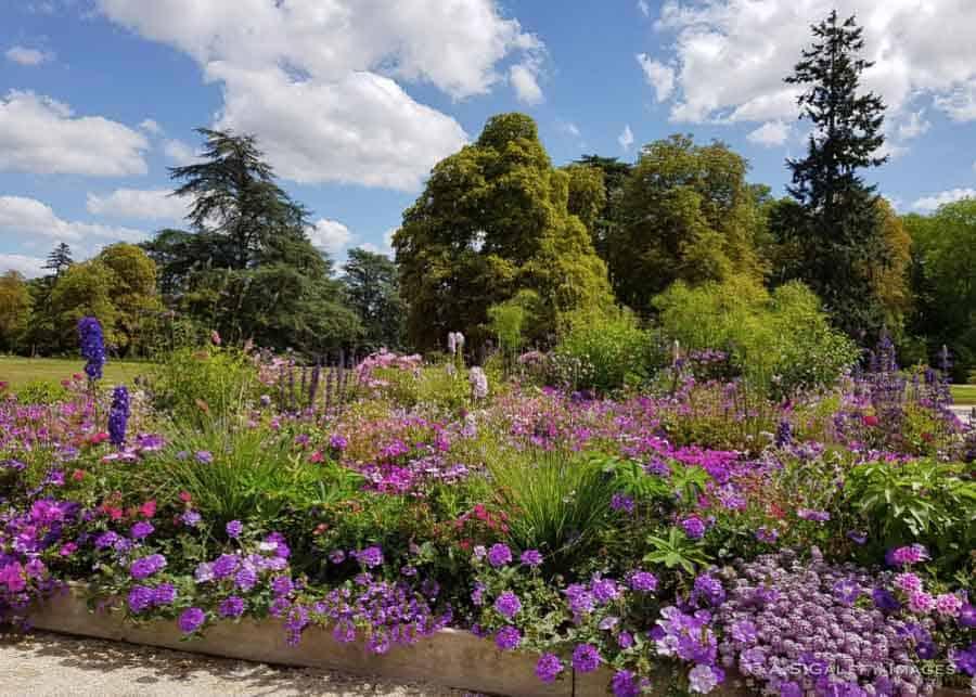 the gardens at Château de Chaumont