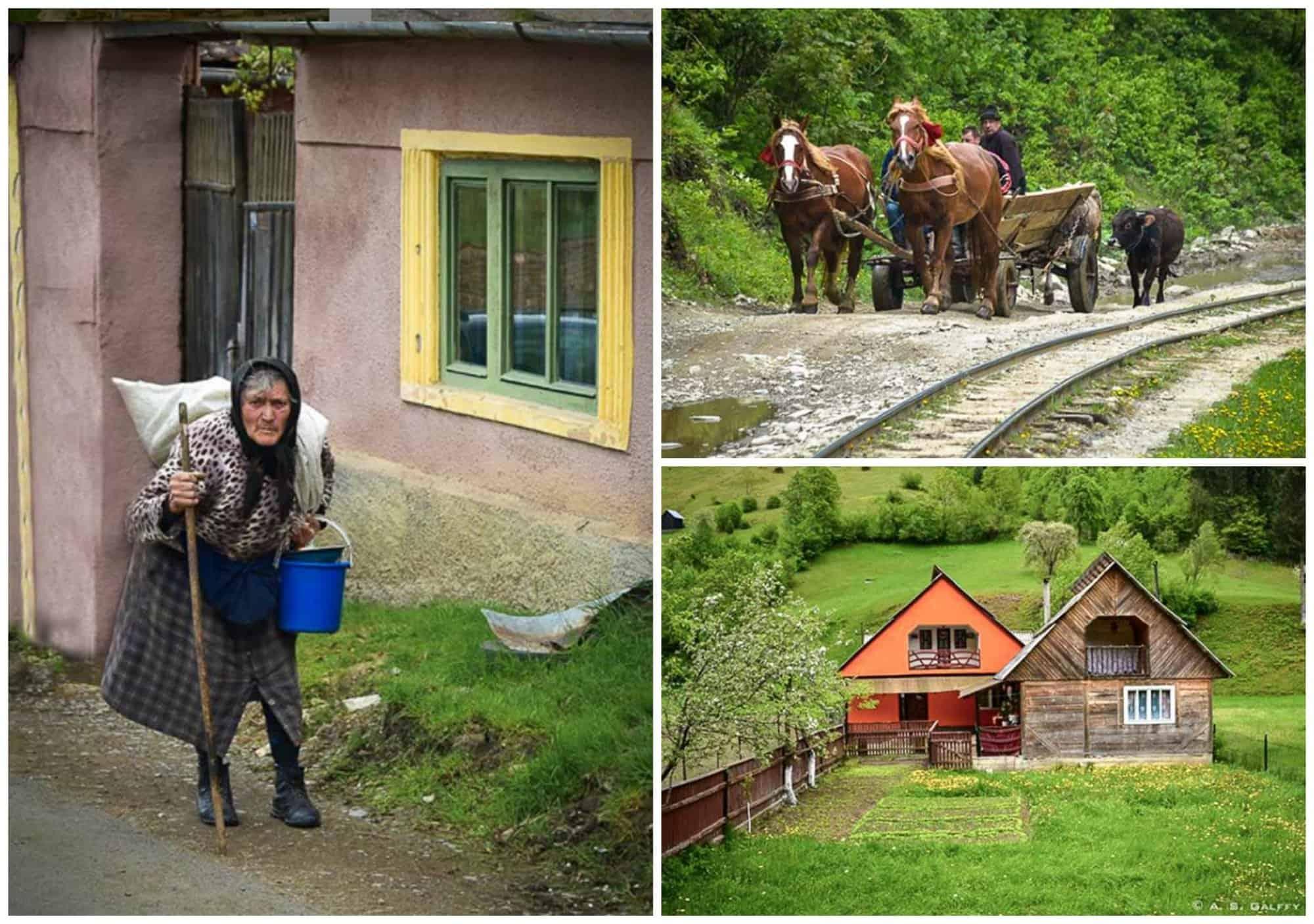 rural life in Viseul de Sus village