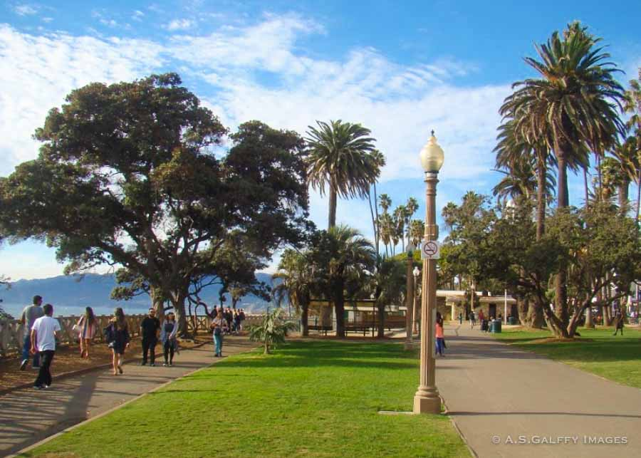 One day in LA visiting the Pacific Palisades park