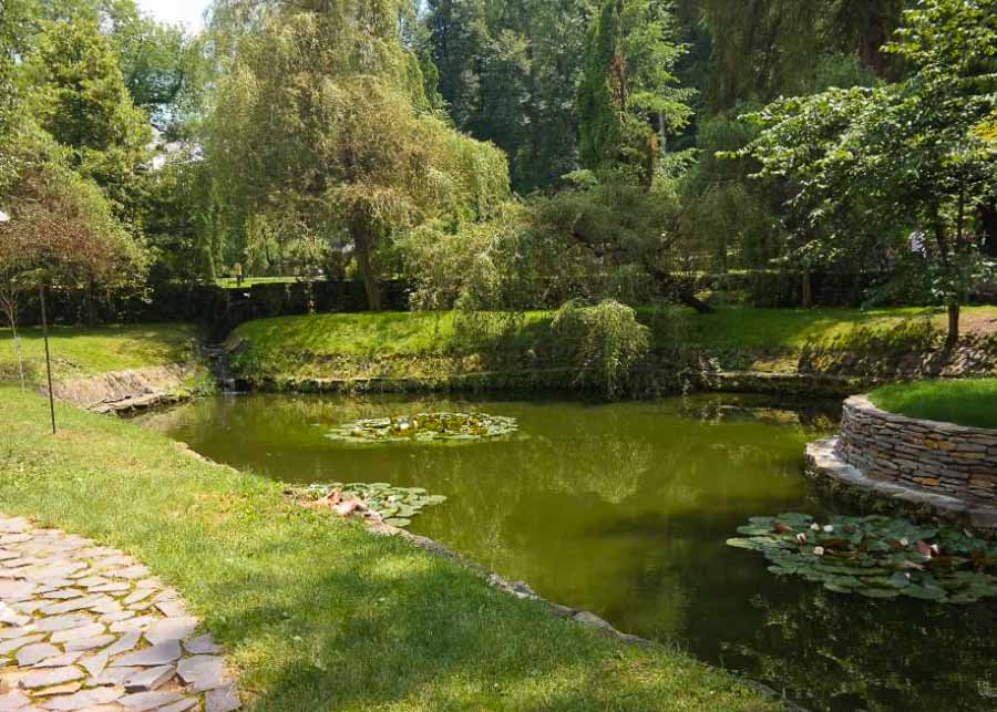 One of the ponds on the castle grounds