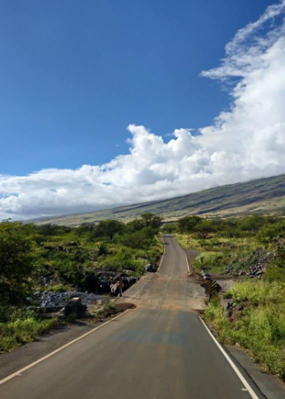 The back road to Hana