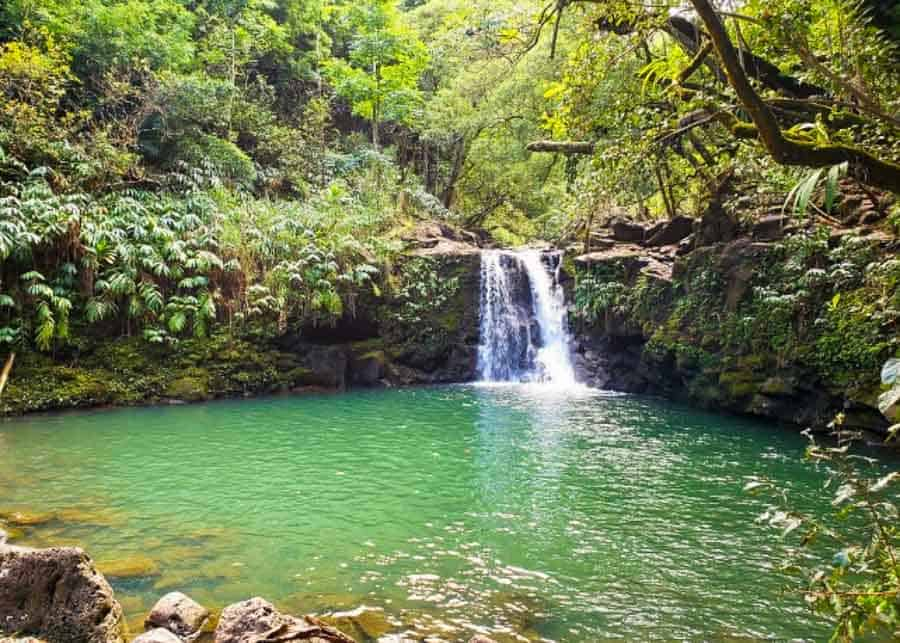 view of the Twin Falls, the second stop on the Road to Hana itinerary