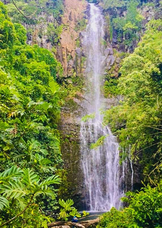 View of the Wailua Falls from the Road to Hana