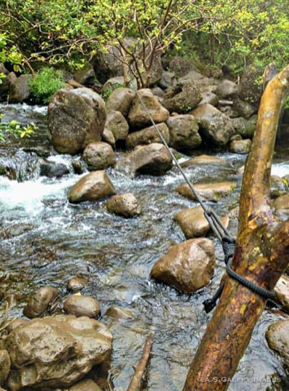 Stream crossing on the Hanakapiai Falls Trail